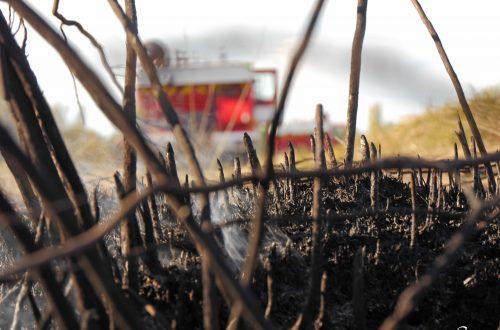 Feux avec pompiers